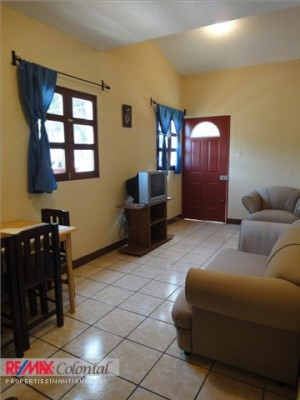 3339 NICE APARTMENTS FOR RENT  CLOSE TO CENTRAL ANTIGUA