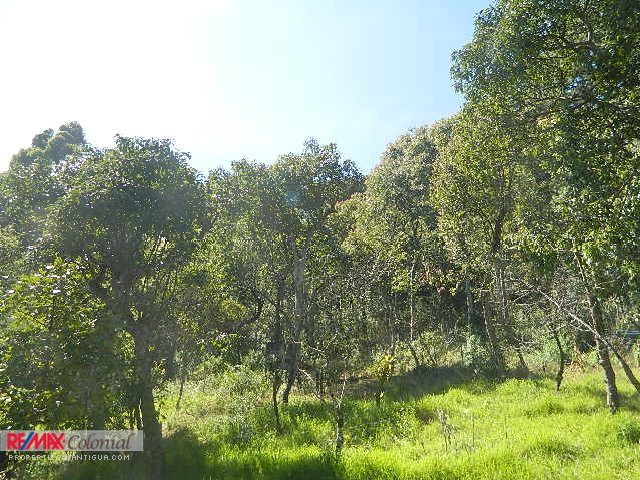 4085 BEAUTIFUL LAND IN MILPAS ALTAS