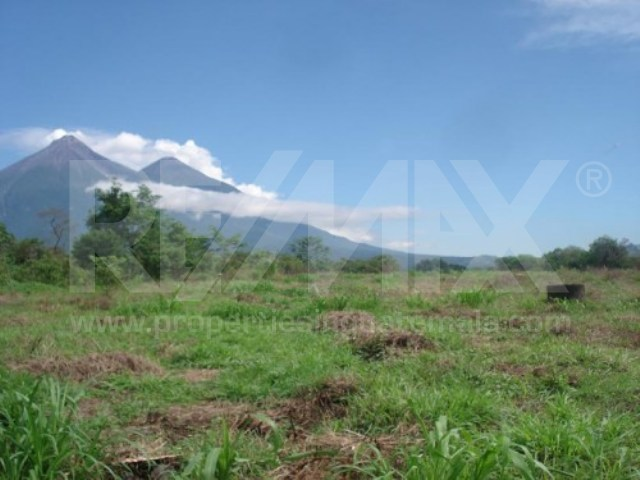 2688 LOT FOR RENT (25 ACRES)