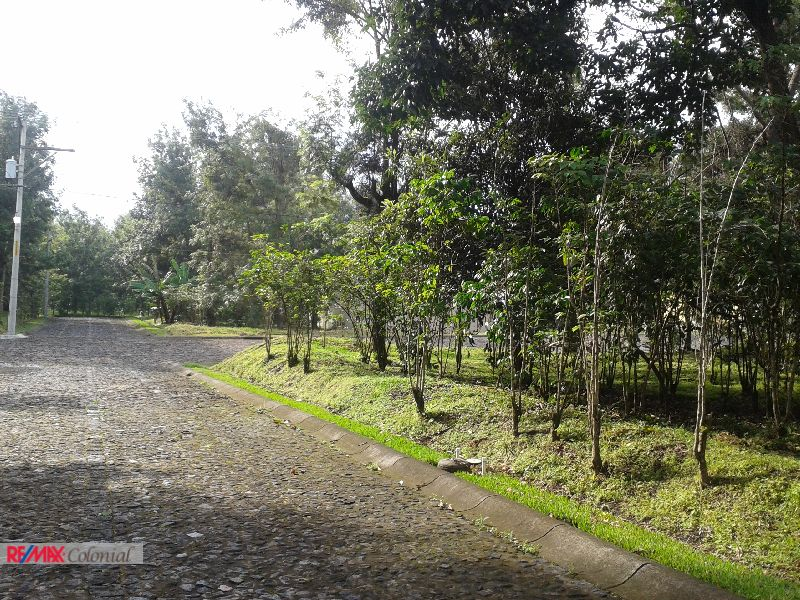 4349 FLAT LAND FOR SALE IN ANTIGUA GARDENS, FASE II