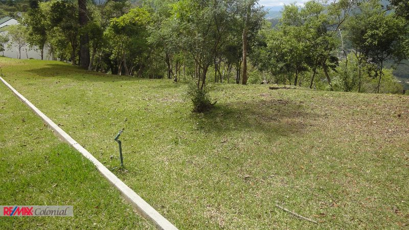 4397 BEAUTIFUL LOT FOR SALE IN TENEDOR DEL CERRO (EL PORTILLO)