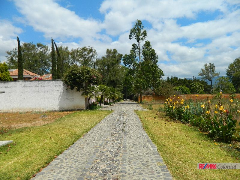 4648 FLAT LAND FOR SALE IN FINCA TETUAN, PANORAMA