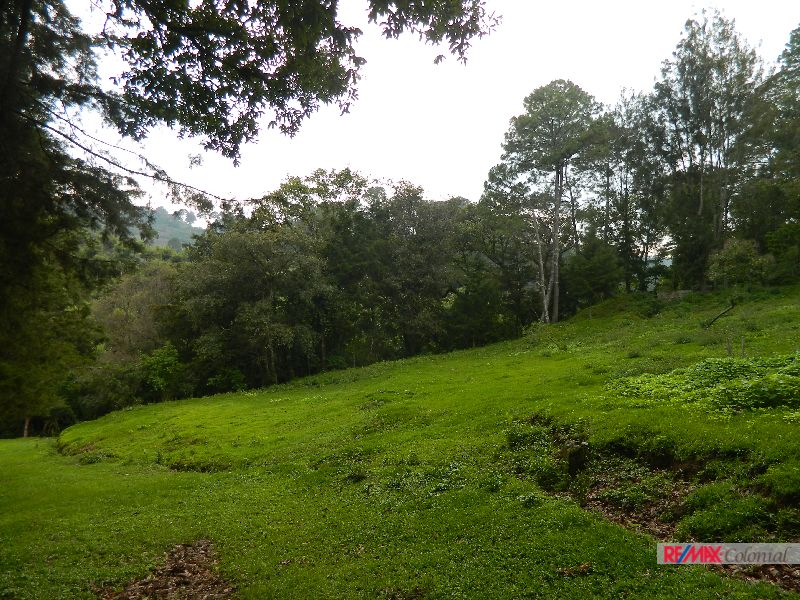 4684  FARM FOR SALE IN SAN JUAN SACATEPEQUEZ