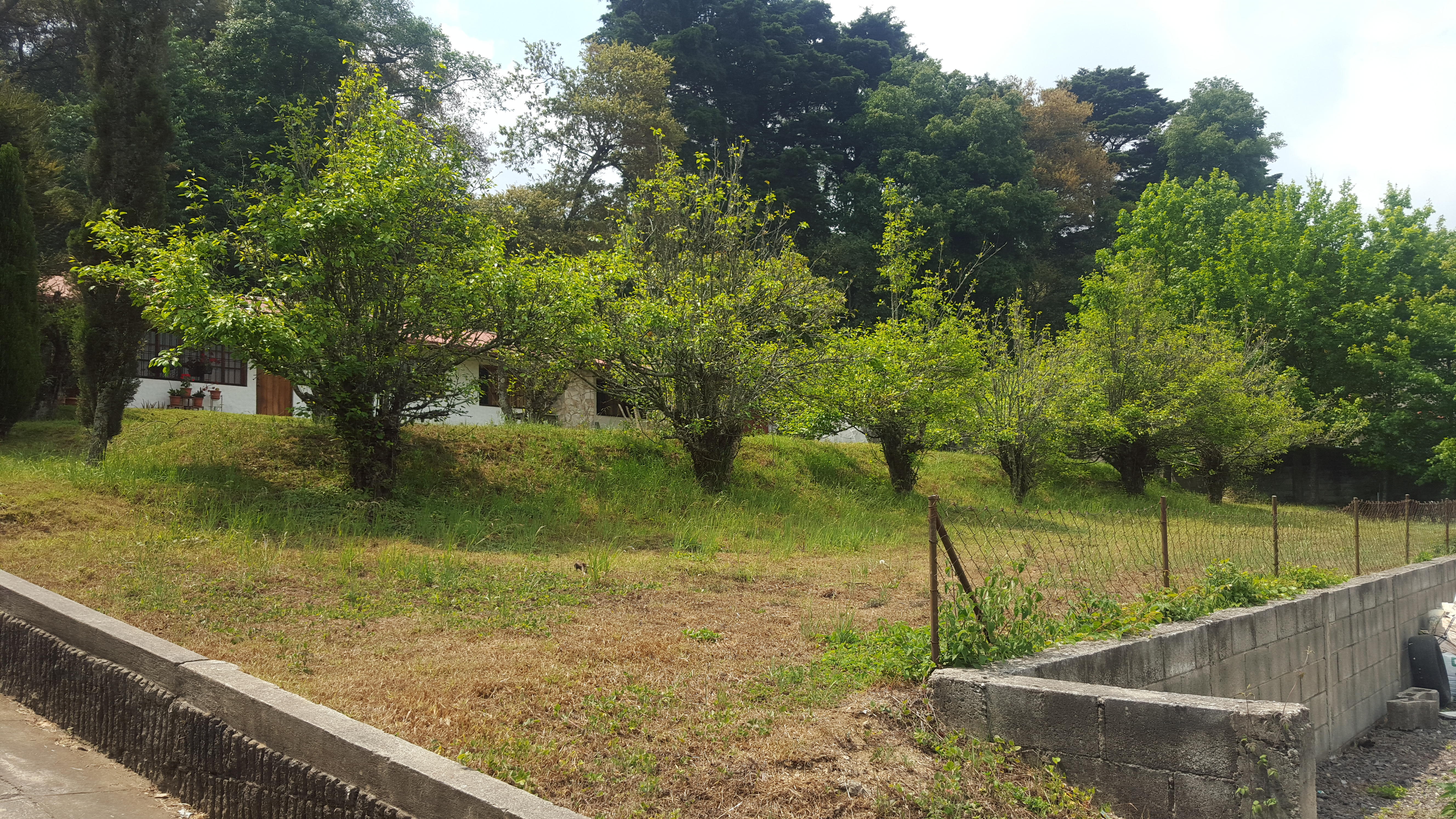 4322  BEAUTIFUL LAND FOR SALE IN SAN LUCAS