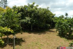 4744-014-High-Quality-land-for-planting-easy-access-from-main-road-of-San-Luis-Pueblo-Nuevo