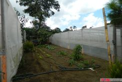 4744-032-High-Quality-land-for-planting-easy-access-from-main-road-of-San-Luis-Pueblo-Nuevo