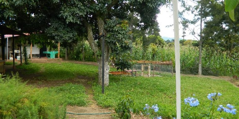 4744-037-High-Quality-land-for-planting-easy-access-from-main-road-of-San-Luis-Pueblo-Nuevo