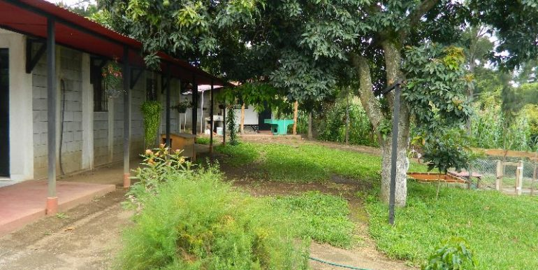 4744-038-High-Quality-land-for-planting-easy-access-from-main-road-of-San-Luis-Pueblo-Nuevo