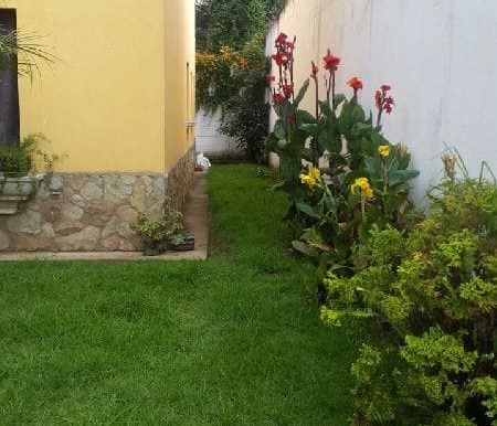 4768-property-in-antigua-05