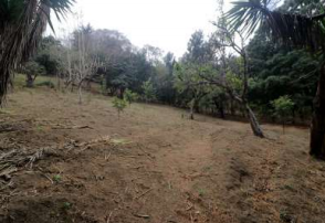 2026 LOT FOR SALE IN SANTA INÉS, CLOSE TO ANTIGUA (24,000V2) (C)