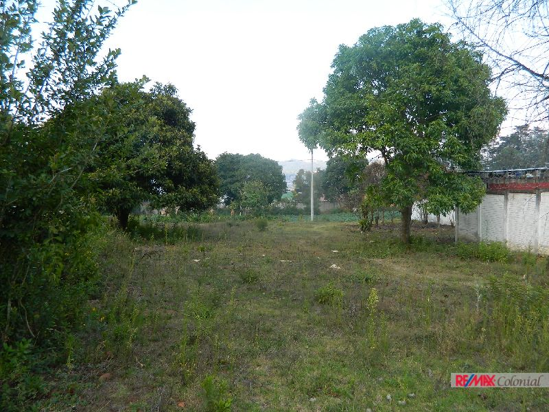 4885 BIG LAND FOR SALE CLOSE TO ANTIGUA GUATEMALA ( SANTIAGO SACATEPÉQUEZ )
