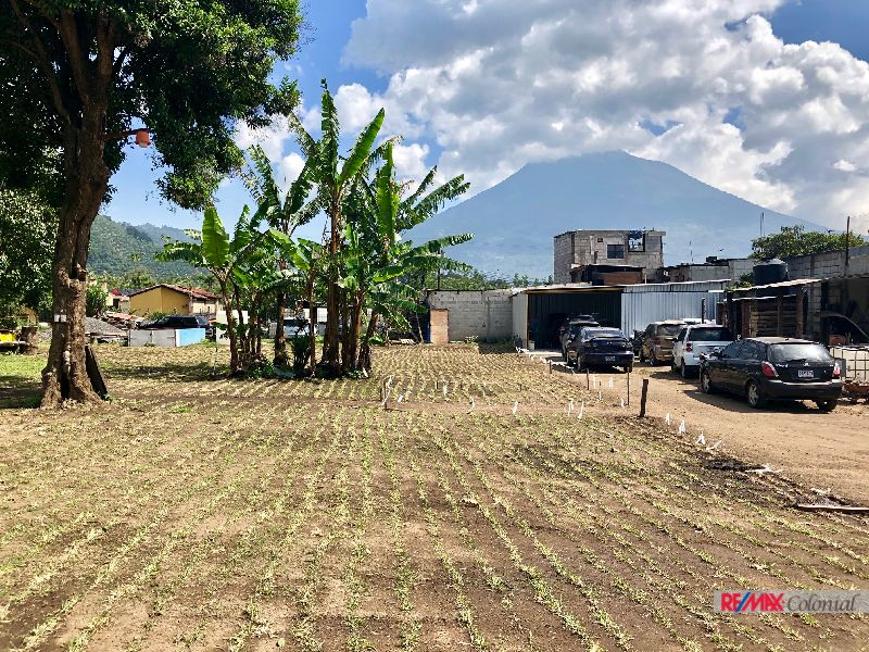 4969 LOT FOR SALE IN SANTA ANA/EL CALVARIO, EXCELLENT OPTION!
