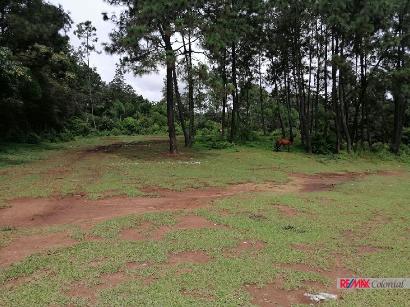 5093 PROPERTY FOR SALE IN CHIMALTENANGO