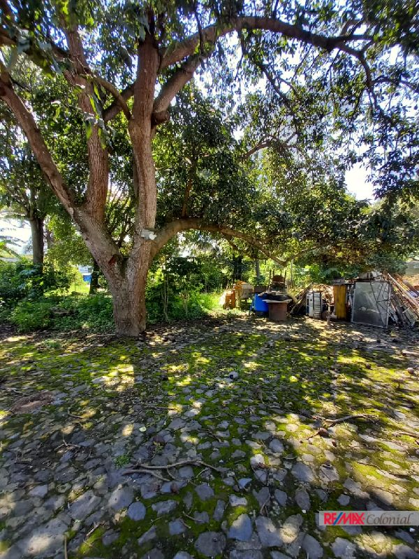 6009 LAND FOR SALE