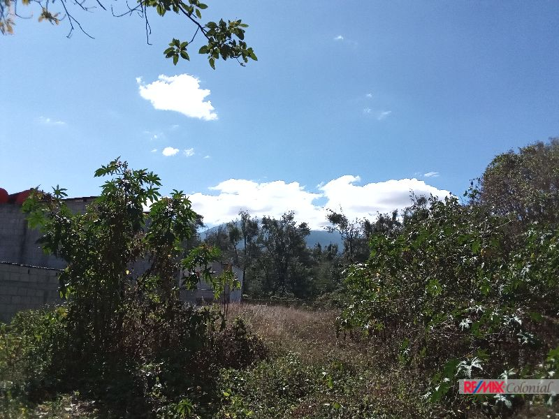 4875 FLAT LAND FOR SALE WALKING DISTANCE FROM THE CENTRAL PARK OF ANTIGUA GUATEMALA / 1654V2